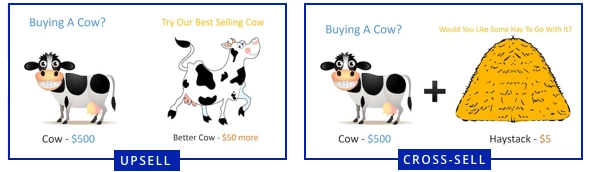 Upsell-and-Cross-sell-cow