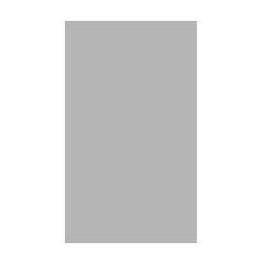 TheDylan Logo