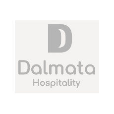 Dalmata - Grey Bg